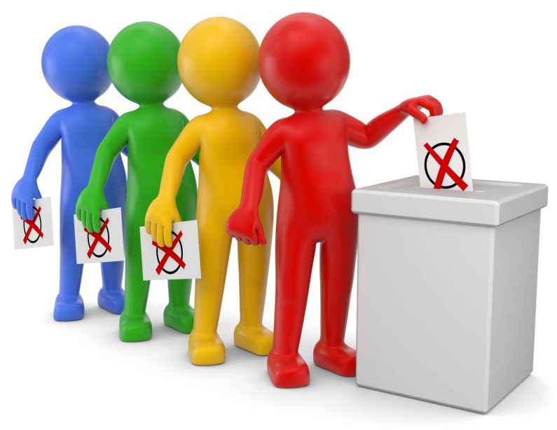 Abstimmungen im Verein