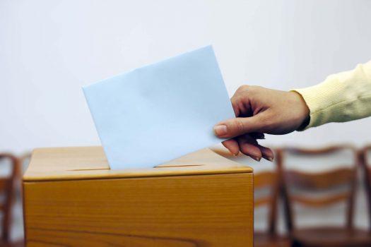 Stimmrecht Vereinsmitglieder