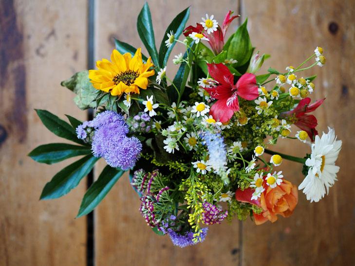 Auf dem Foto ist ein farbenfroher Blumenstrauß zu sehen. Wir geben Ihnen jetzt Tipps, wie Sie sich als Vereinsvorstand bei Spendern bedanken können. Denn Dankesschreiben und Spende gehen Hand in Hand.